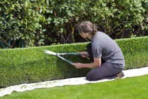 Kertész tanfolyam
